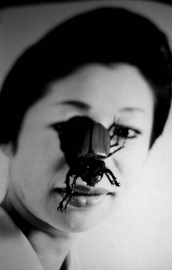 Bug on face